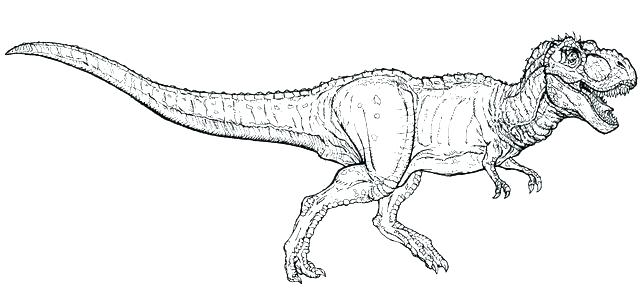 640x293 Trex Coloring Pages Tyrannosaurus Coloring Page T Goes Hunting T