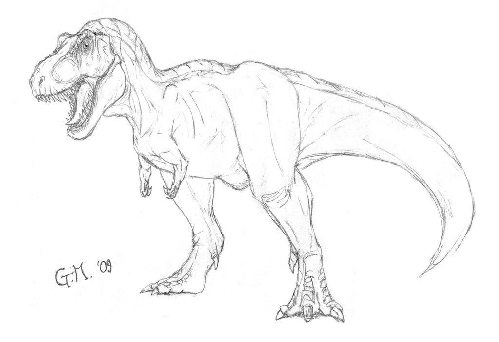 1024x703 Realistic Dinosaur Drawing