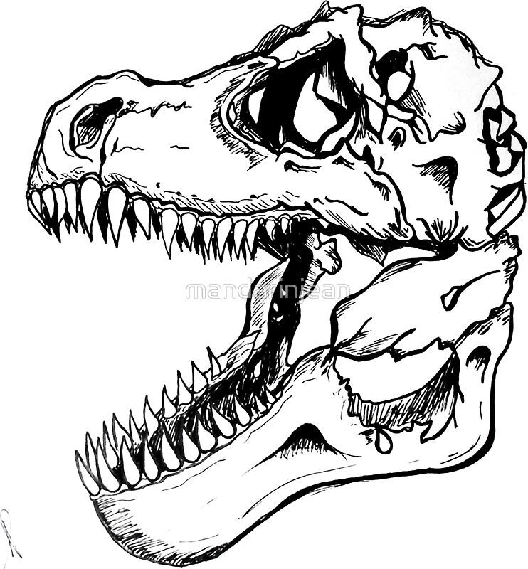 742x800 T Rex Skull Stickers By Mandarinjean Redbubble