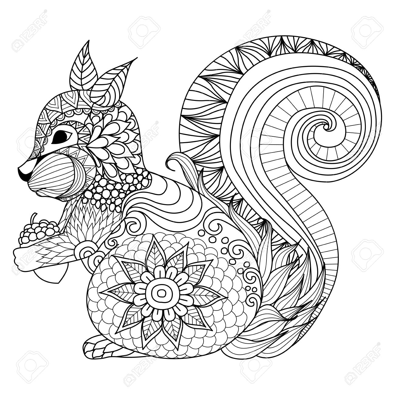 1300x1300 Hand Drawn Squirrel Zentangle Style For Coloring Book,tattoo,t