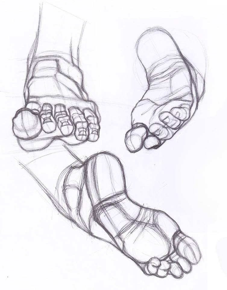 753x960 Feet Studies
