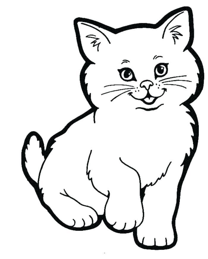 Tabby Drawing at GetDrawings | Free download