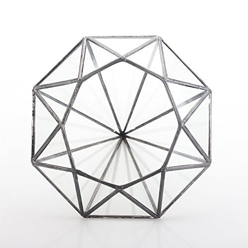 500x500 Modern Octahedral Large Glass Geometric Terrarium Tabletop