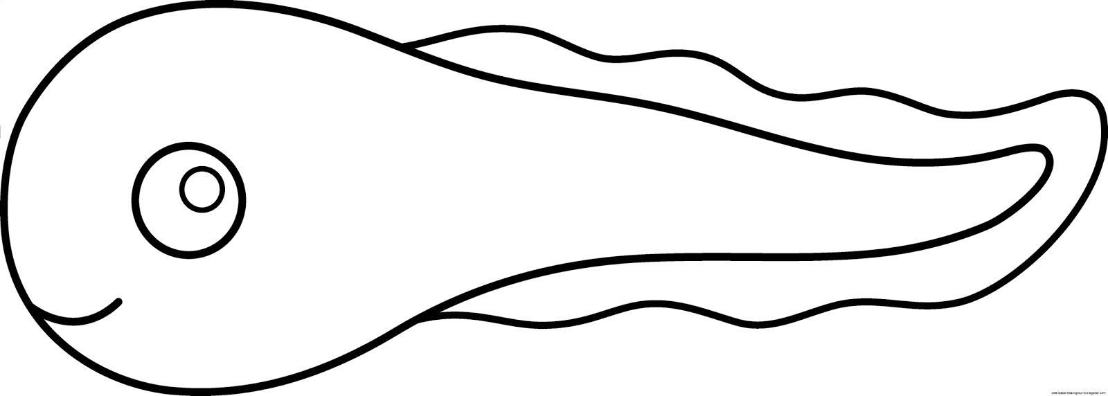 tadpole drawing at getdrawings com free for personal use tadpole rh getdrawings com