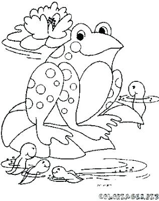Tadpole Drawing at GetDrawings.com | Free for personal use Tadpole ...