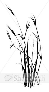 207x388 7 Best Tattoos Images On Grass Drawing, Botanical