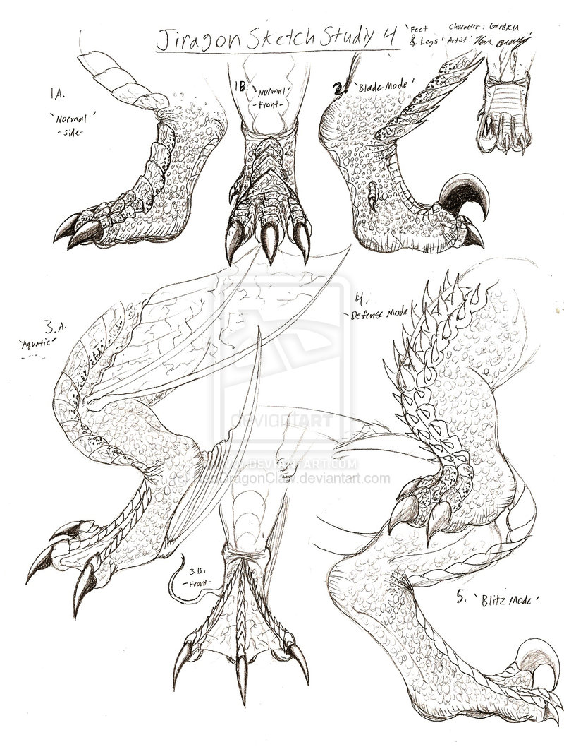 800x1058 How To Draw Dragon Claws Jiragonrmnd Claw Sketches Pick Up