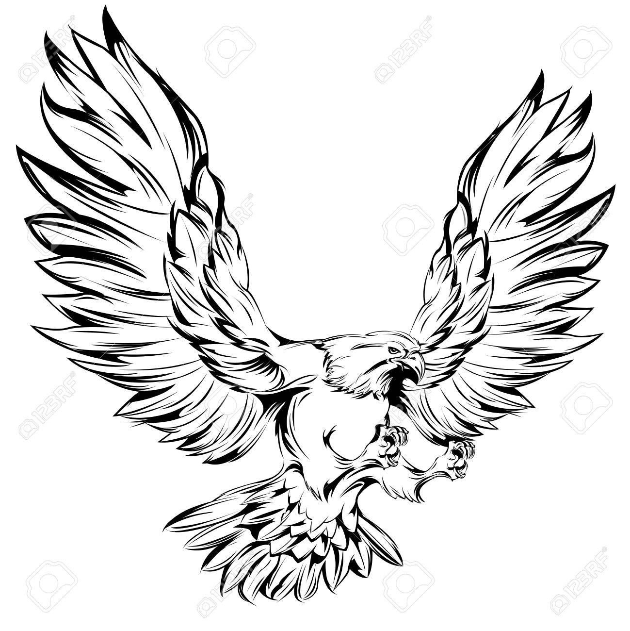 1299x1300 Monochrome Eagle During Landing With Raised Wings And Outstretched