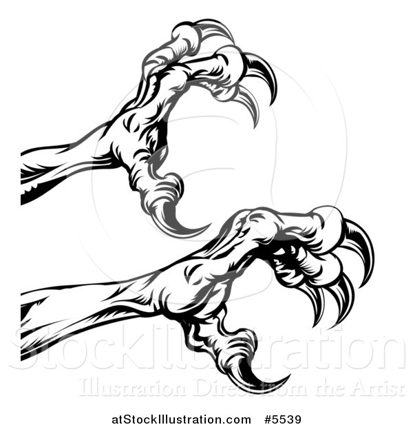 600x620 Vector Illustration Of Black And White Reaching Eagle Talons By