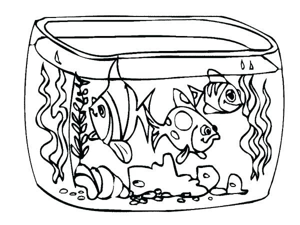 600x450 Fresh Fish Tank Coloring Page Free Download Aquarium How To Draw