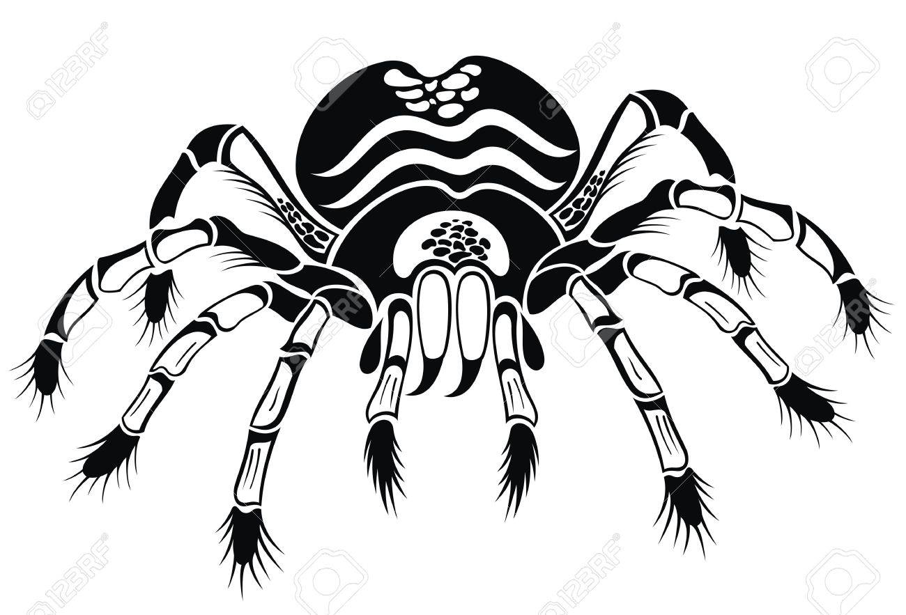 1300x883 Black Tarantula. Tattoo Spider Royalty Free Cliparts, Vectors,