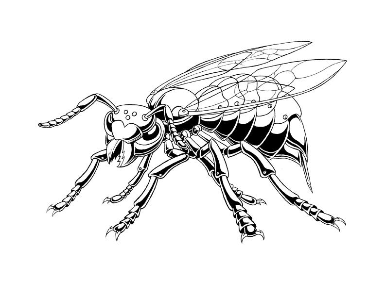 792x612 Wasp Bot