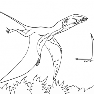 308x308 Photos Pteranodon Coloring Pages Tilapia Ideas Drawings