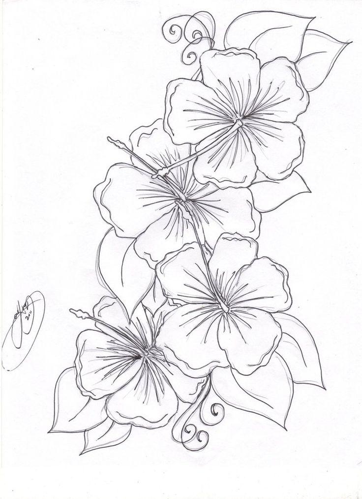 736x1013 Drawn Hummingbird Hibiscus
