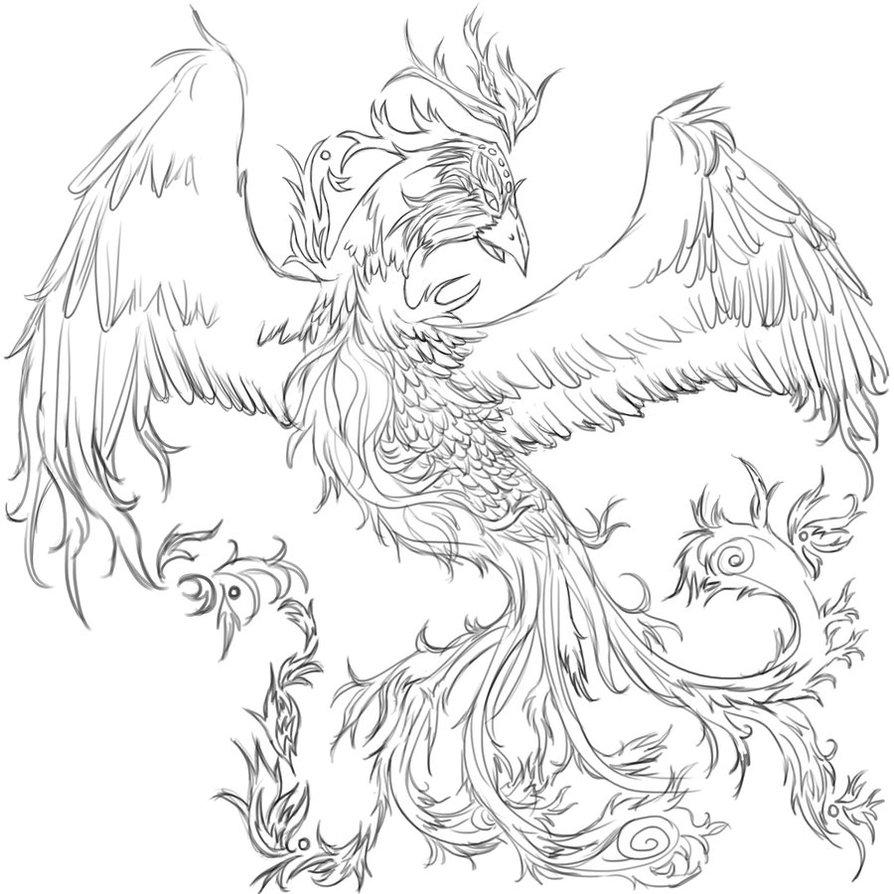 894x894 Phoenix Tattoo Wip By Tinnu
