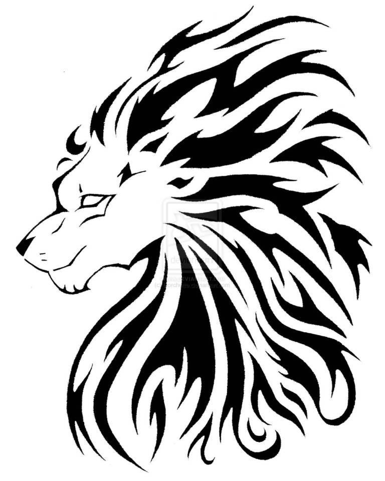 768x960 Incredible Lion Tattoo Design On Paper