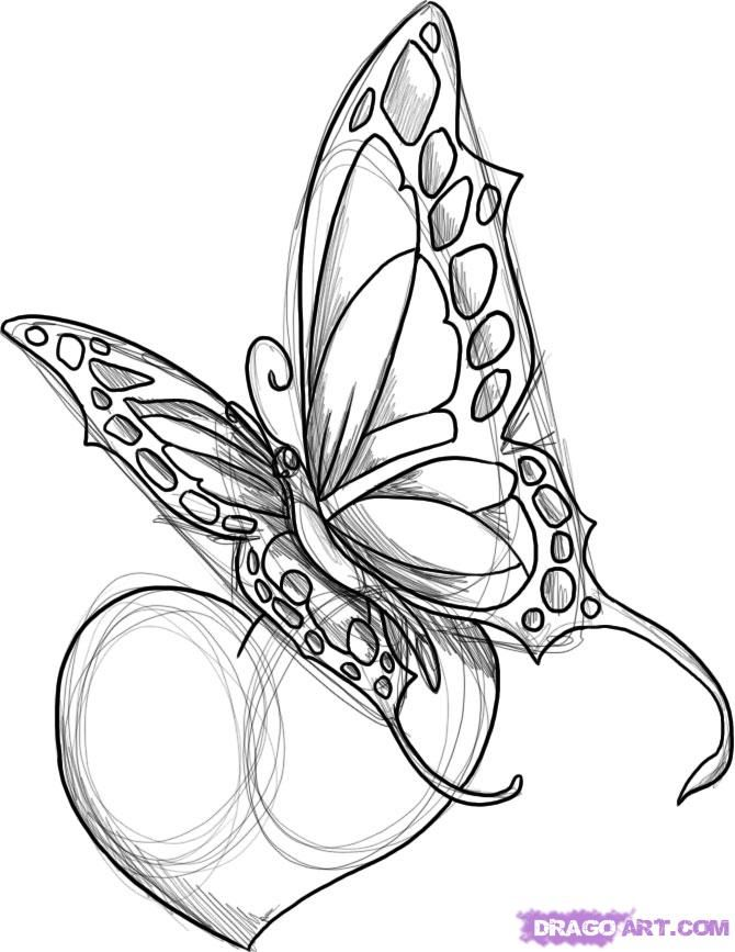 670x867 Flowers And Butterflies With A Heart Tattoo Designs How To Draw