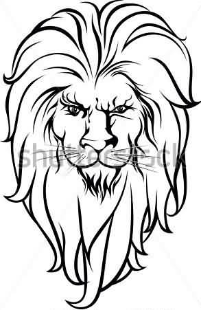 293x451 Coloured Lion Tattoo Design On Paper