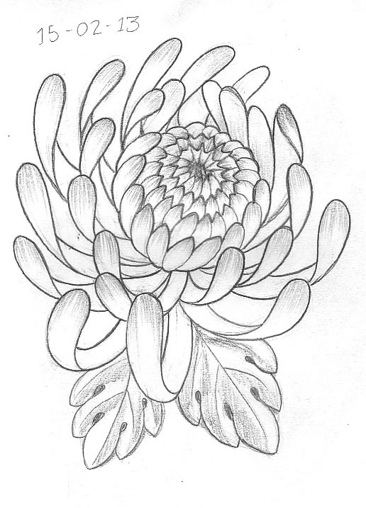 516x717 Tattoo Sketch A Day February 2013