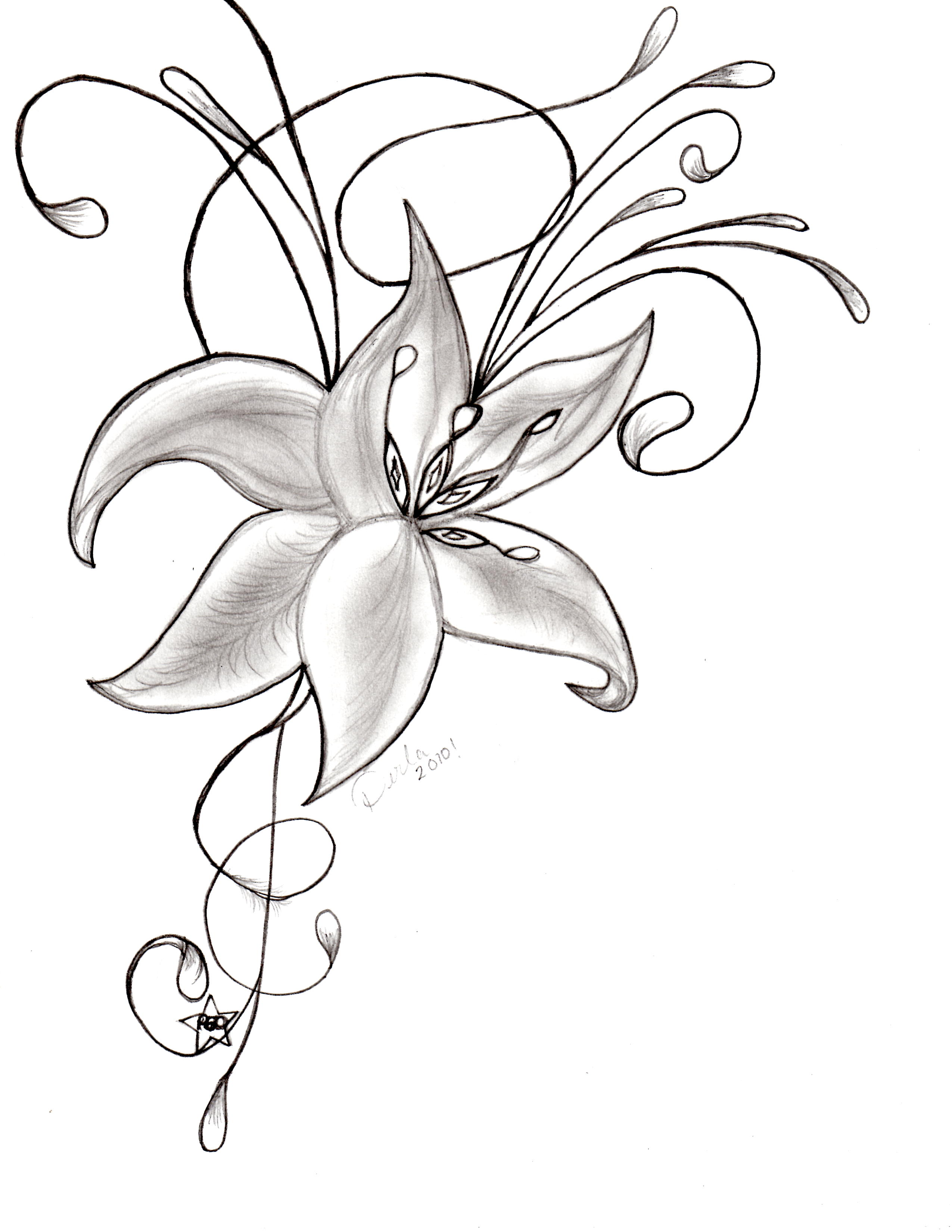 2550x3300 Gousicteco Orchid Drawing Tattoo Images