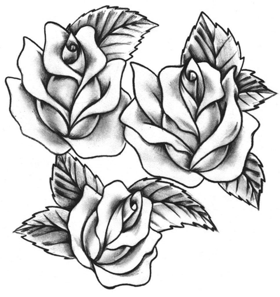 966x1024 Download Rose Tattoo Drawing Designs