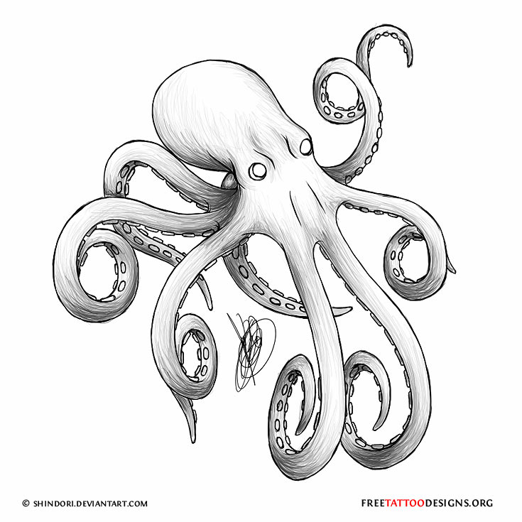 735x735 66 Octopus Tattoo Designs