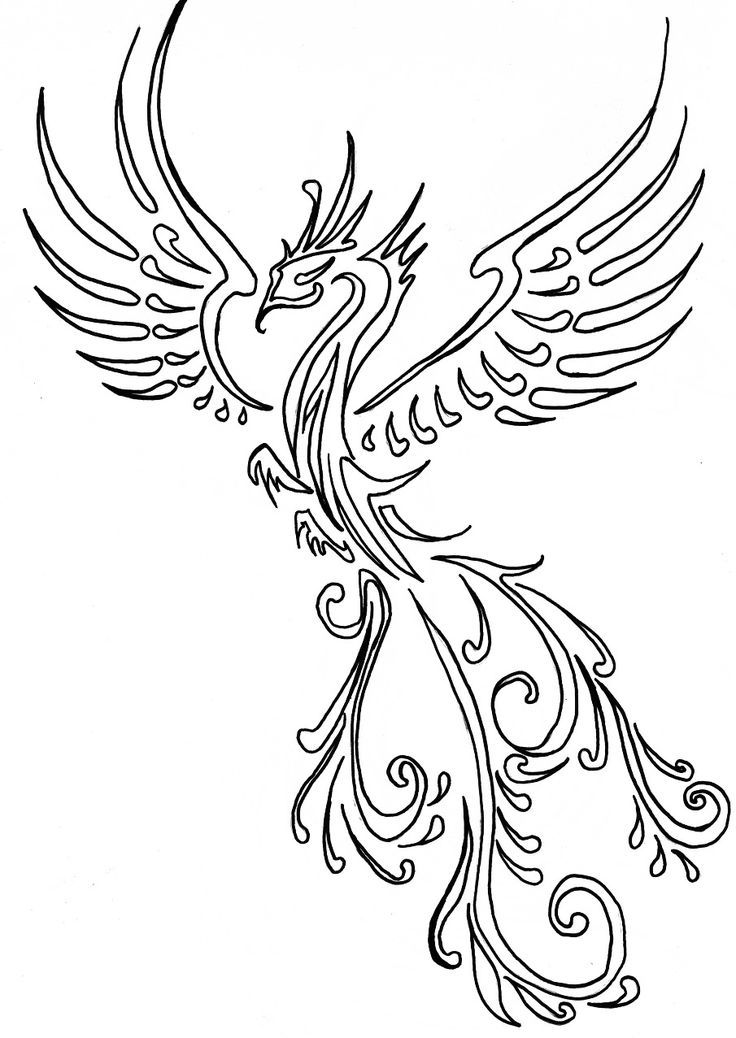 736x1038 29 Best Chinese Phoenix Tattoo Designs Line Images