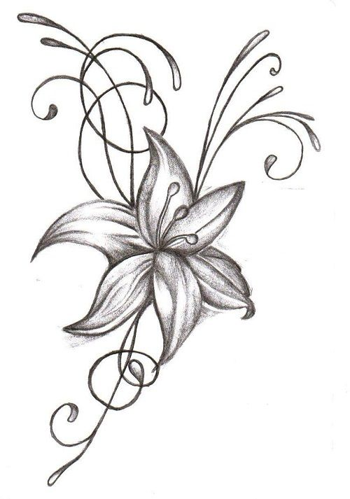 500x713 Coloring Pages Flower Drawing Designs Vine Tattoos Tattoo