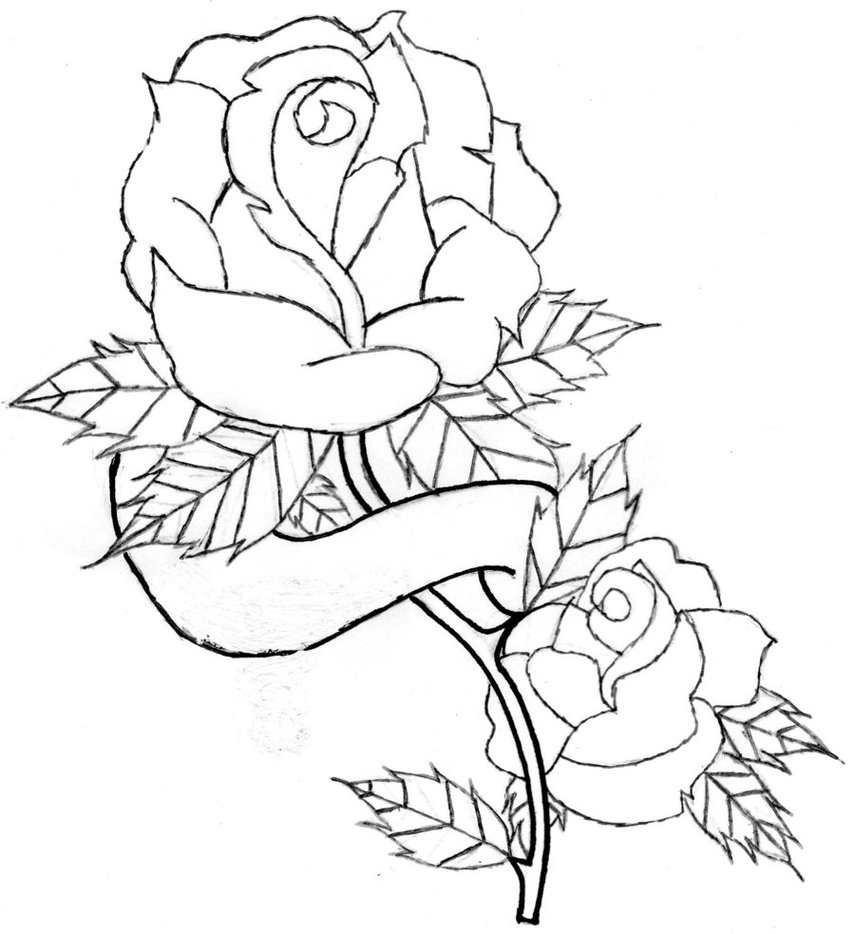 855x934 Rose Patterns For Coloring Rose And Banner Line Art. By