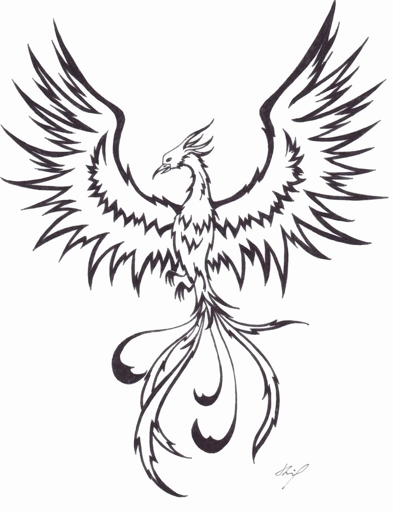 782x1022 Phoenix Coloring Pages New Phoenix Tattoo On Tumblr