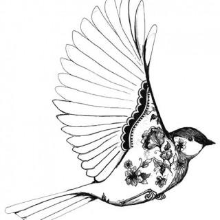 320x320 Tag For Cute Bird Pictures Tumblr Videos Cutest Tattoos Tumblr