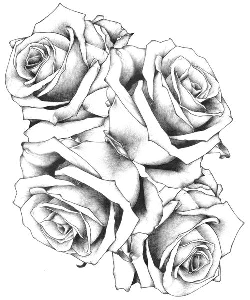 500x600 New Tattoos Drawings