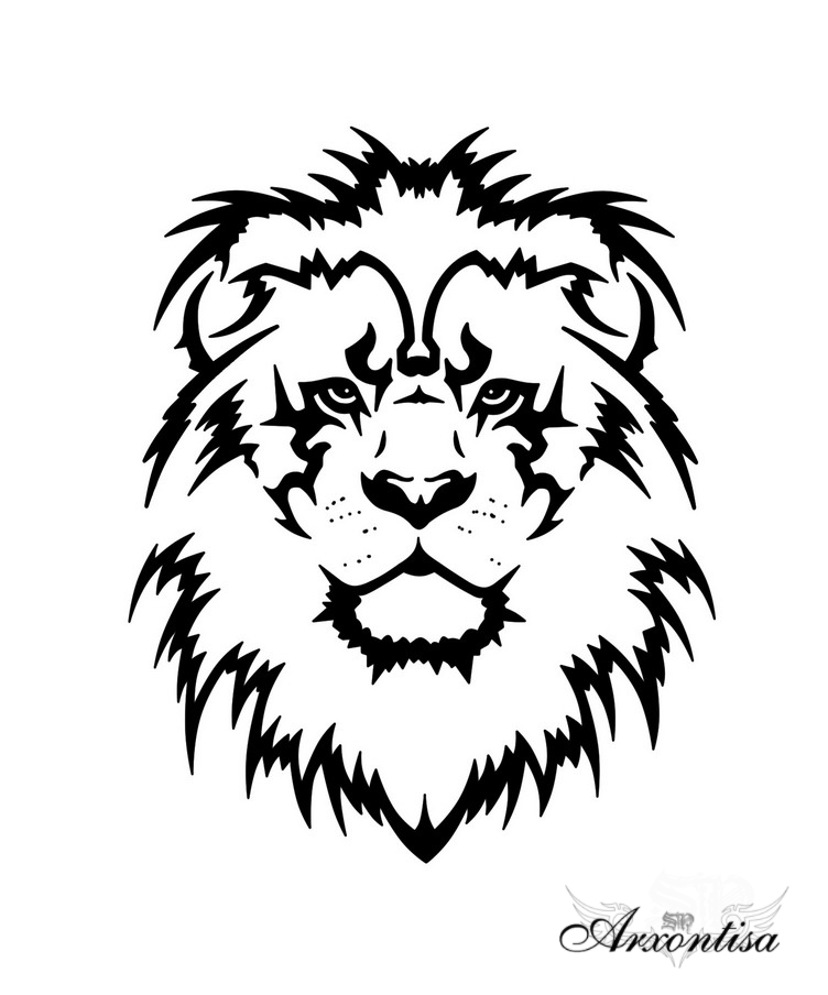752x904 Outline Lion Tattoo Drawing