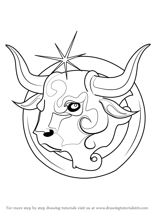 600x846 Learn How To Draw Taurus Zodiac Sign (Zodiac Signs) Step By Step