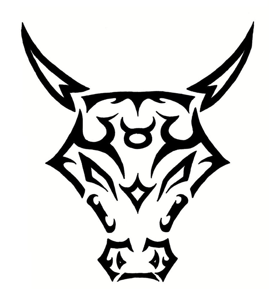 Taurus Bull Drawing