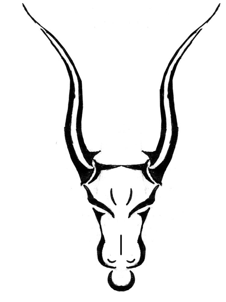 taurus bull images