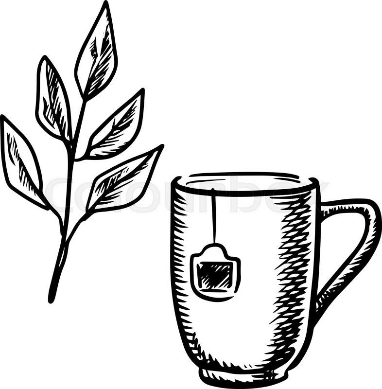 786x800 Sketch Mug Of Tea Made With A Teabag With A Twig Of Fresh Tea