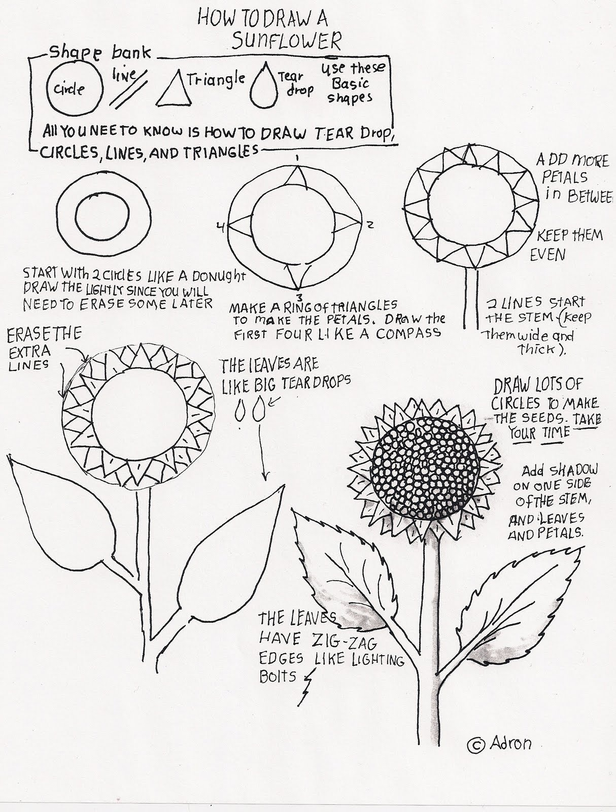 1214x1600 How To Draw Worksheets For The Youngrtist How To Draw