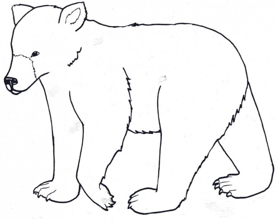940x745 Little Bear Cartoon Drawings Tags Cartoon Bear Drawings How