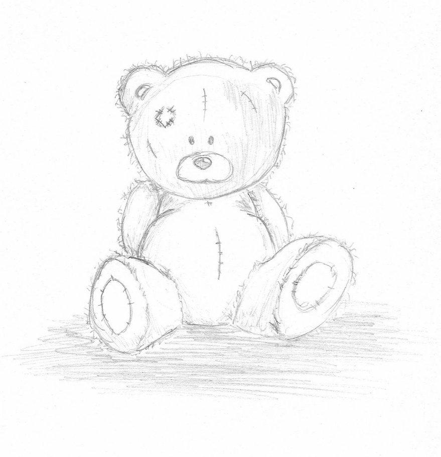 879x910 Teddy Bear Sketch