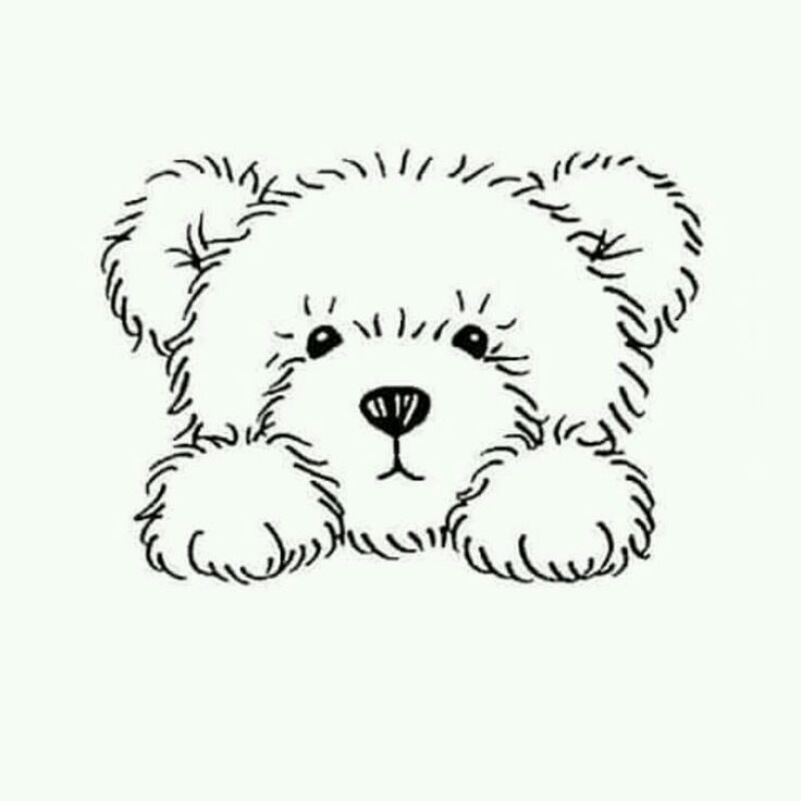 736x736 Best Teddy Bear Quilt Pattern Ideas On Teddy Bear
