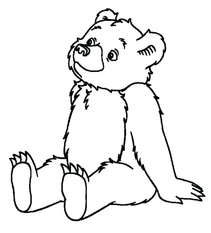 728x803 Coloring Bears Animal Coloring Opulent Design Ideas Teddy Bear
