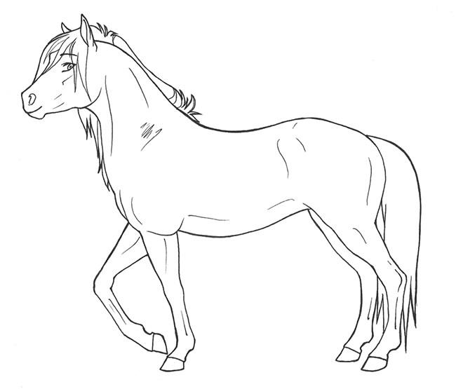 650x555 Horse Template