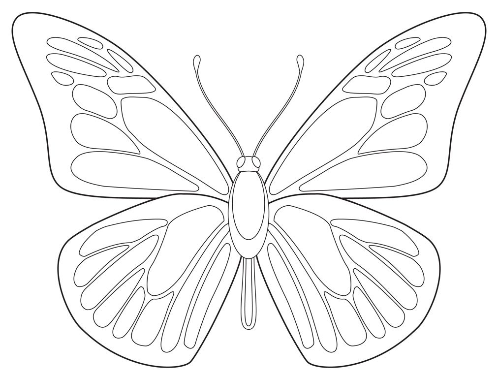 1012x766 Art Projects For Kids Free Butterfly Drawing Download Butterfly
