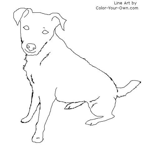 500x500 Sitting Jack Russell Terrier Dog Coloring Page
