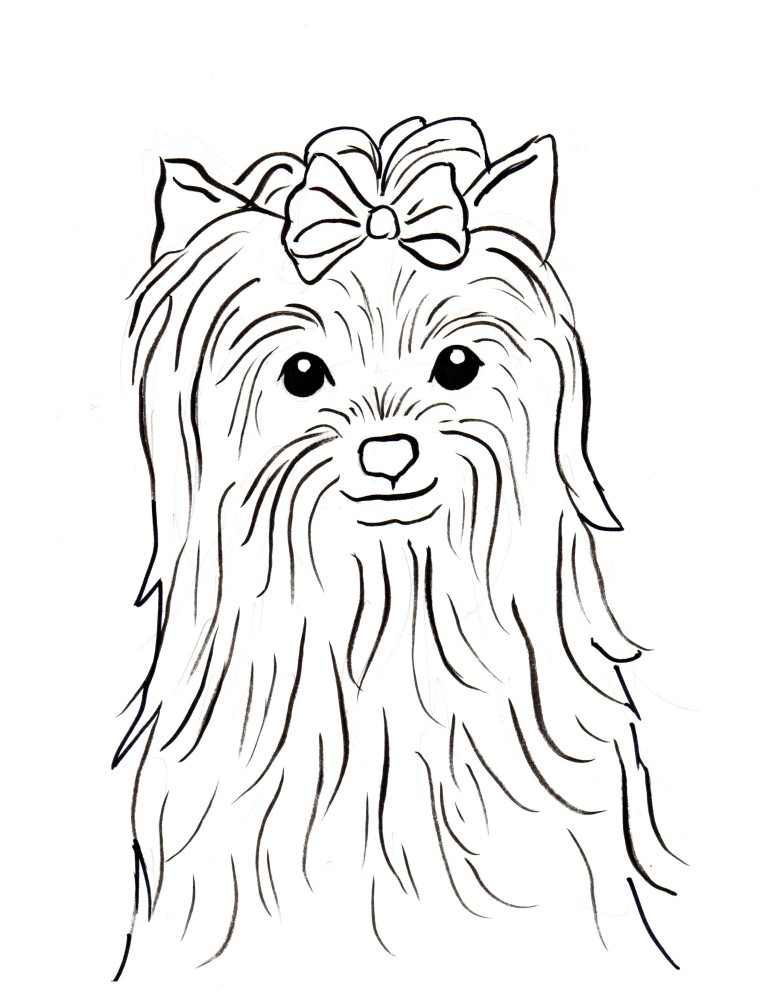 760x991 Yorkshire Terrier Coloring Page