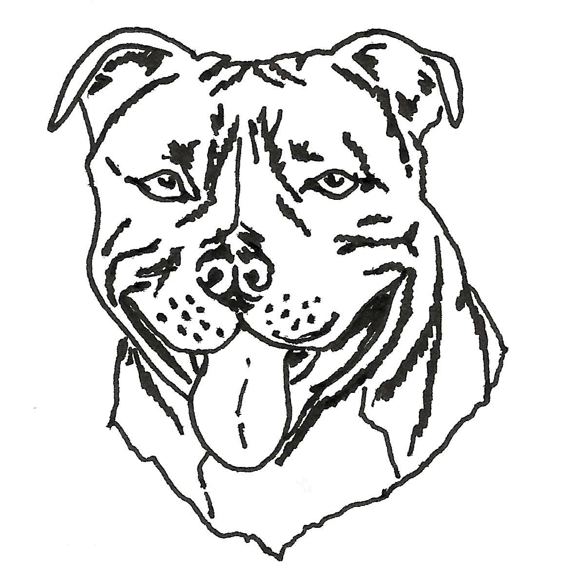 1190x1190 Staffordshire Bull Terrier Drawing Inky Dog Press
