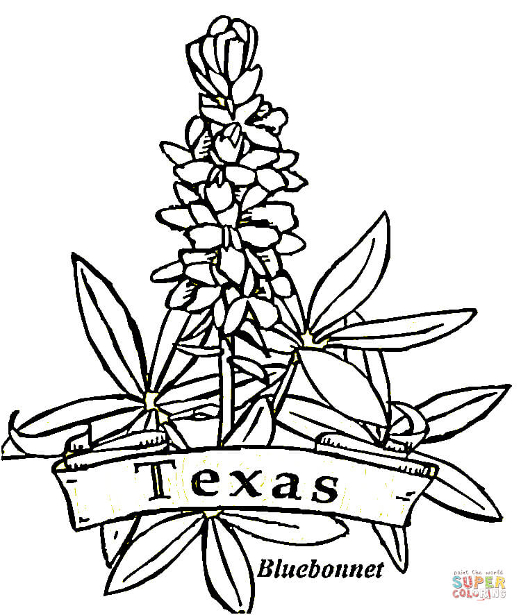 Texas Line Drawing at GetDrawings.com | Free for personal use Texas ...