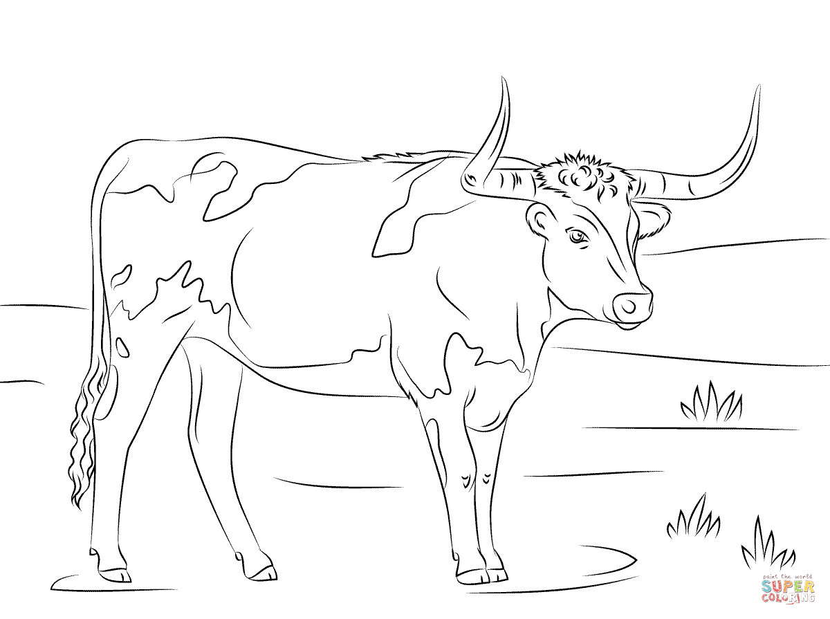 1200x895 Longhorn Coloring Page Free Printable Coloring Pages