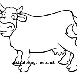 268x268 Inspirational Texas Longhorn Cattle Coloring Pages Best Coloring